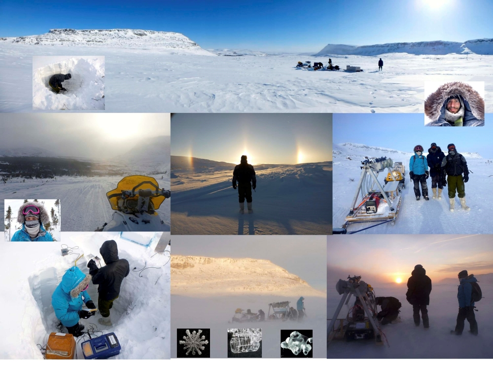 Cryosphere and northern environments