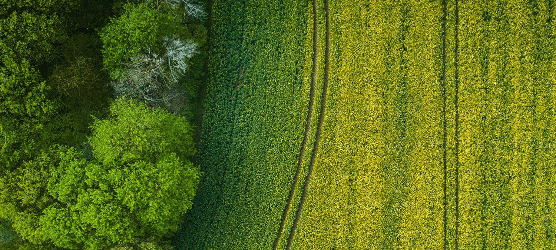Agriculture, ressources naturelles et aménagement du territoire